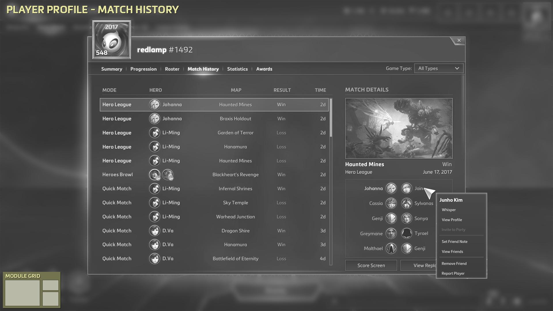 Player Profile - Match History